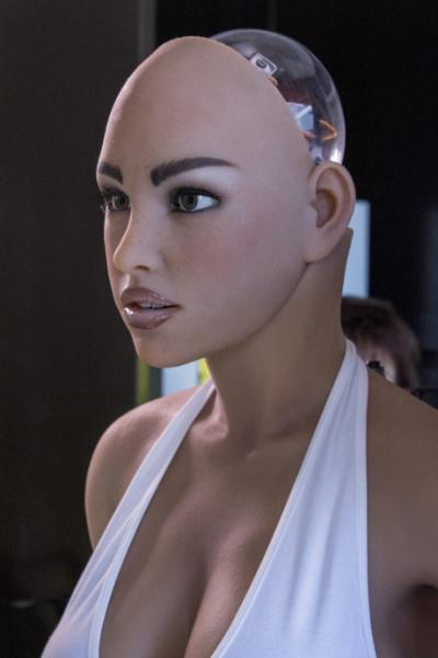 Robot tình dục sẽ xuất hiện cuối năm nay